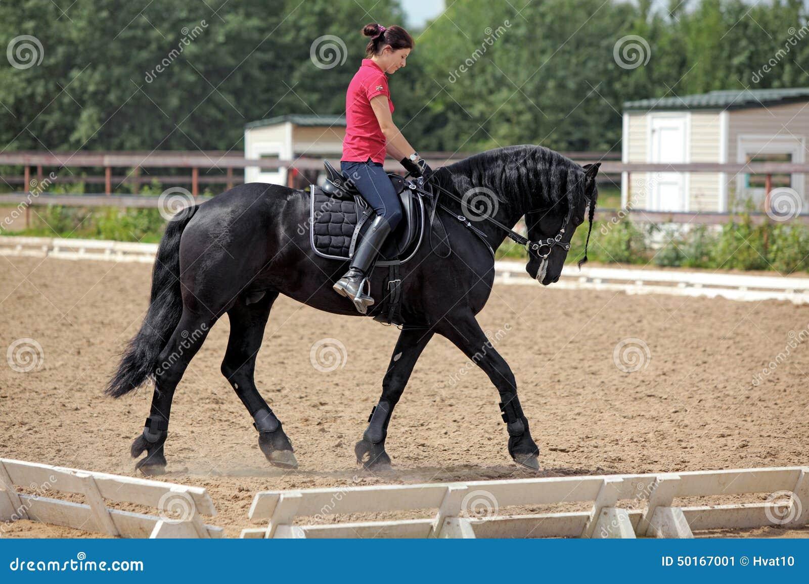 ryggmassage stockholm knulla en häst