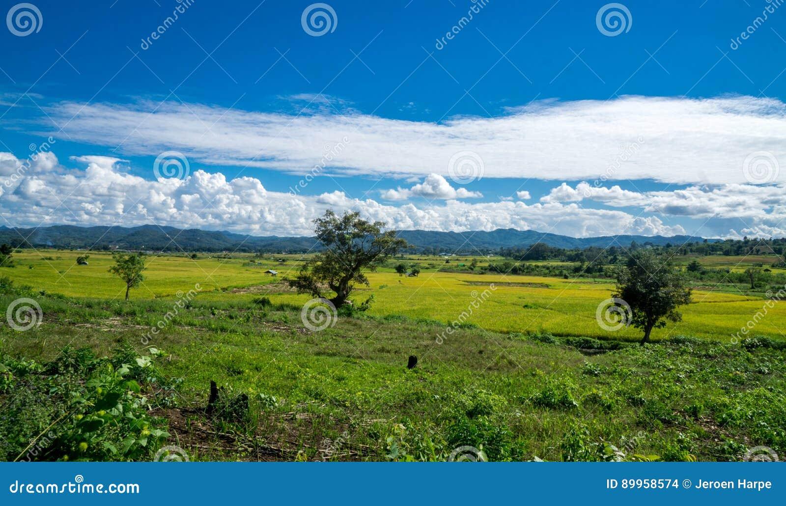 Hsipaw缅甸