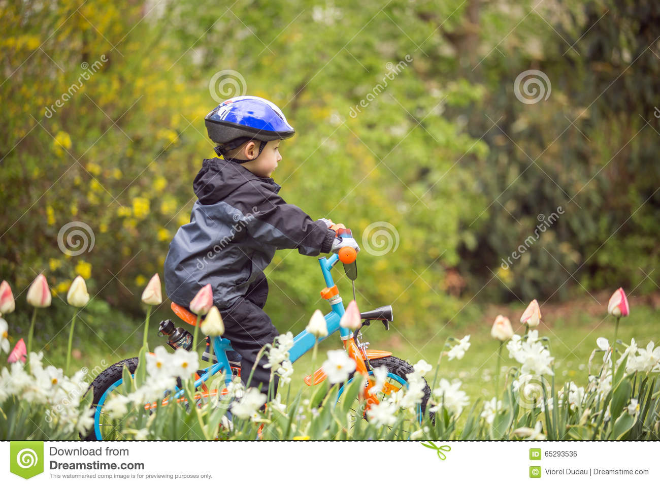 Child Riding Bike Stock Photo Image 65293536