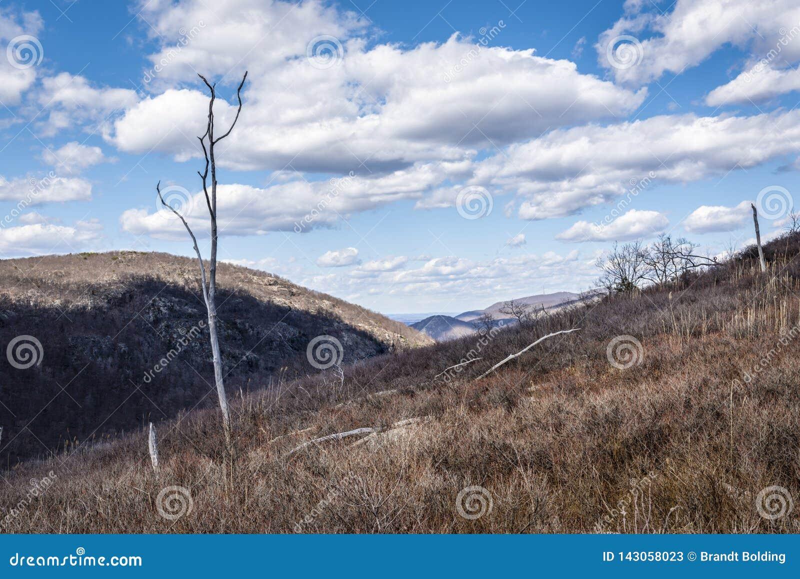 Hudson Highland Hillside och moln