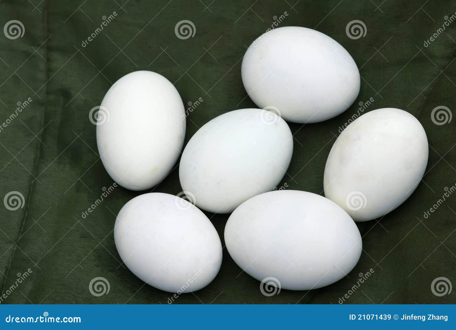Huevo del pato