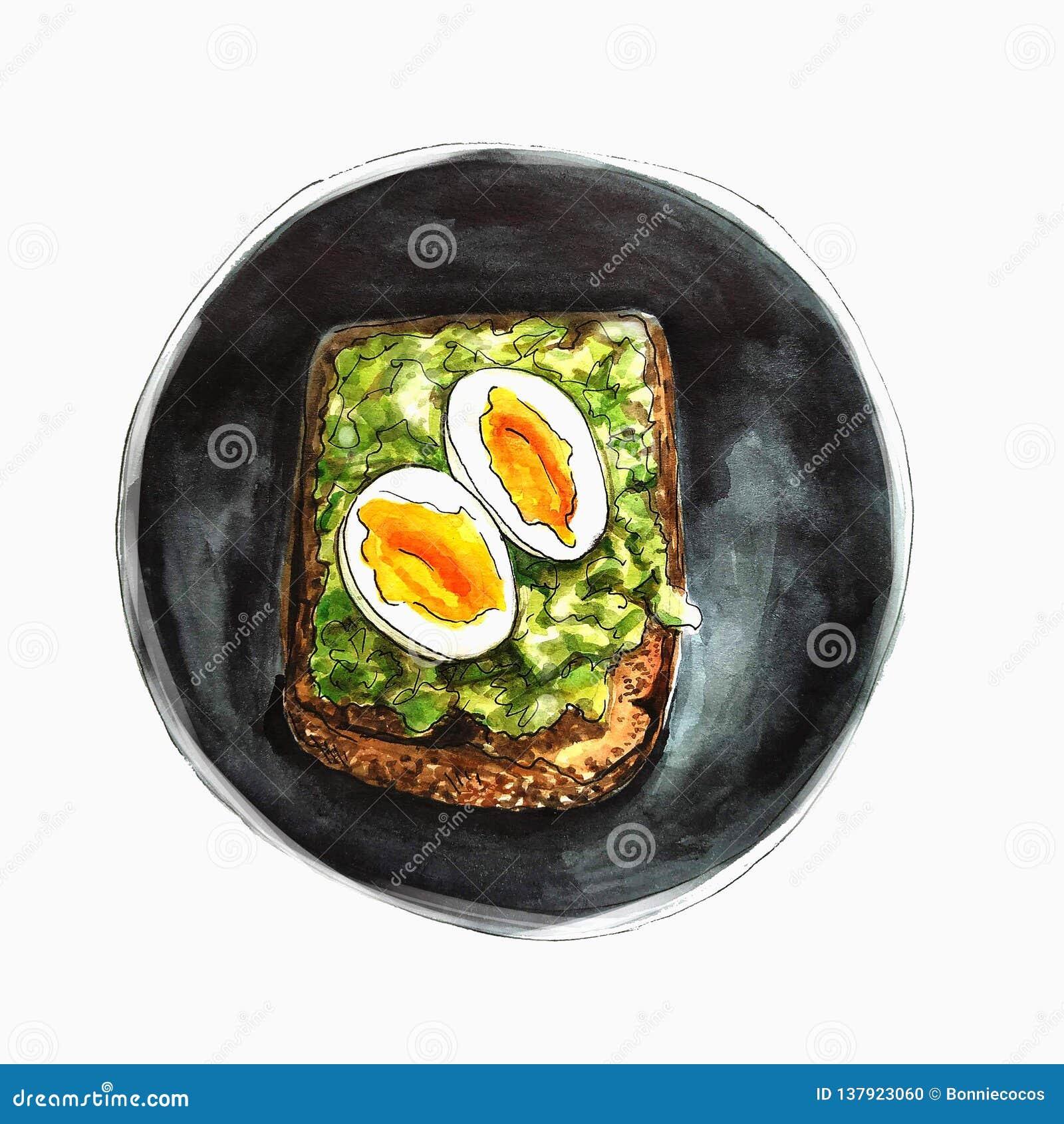 Huevo, queso y ejemplo vegetal del bocadillo watercolor Aislado en el fondo blanco