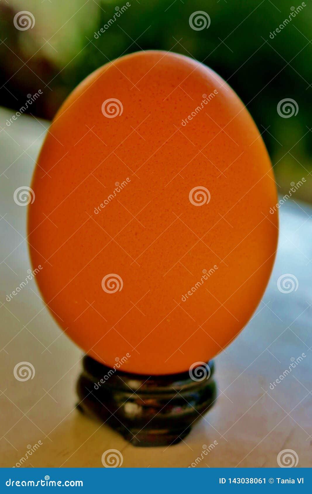 Huevo regular en un pequeño soporte negro en una tabla blanca