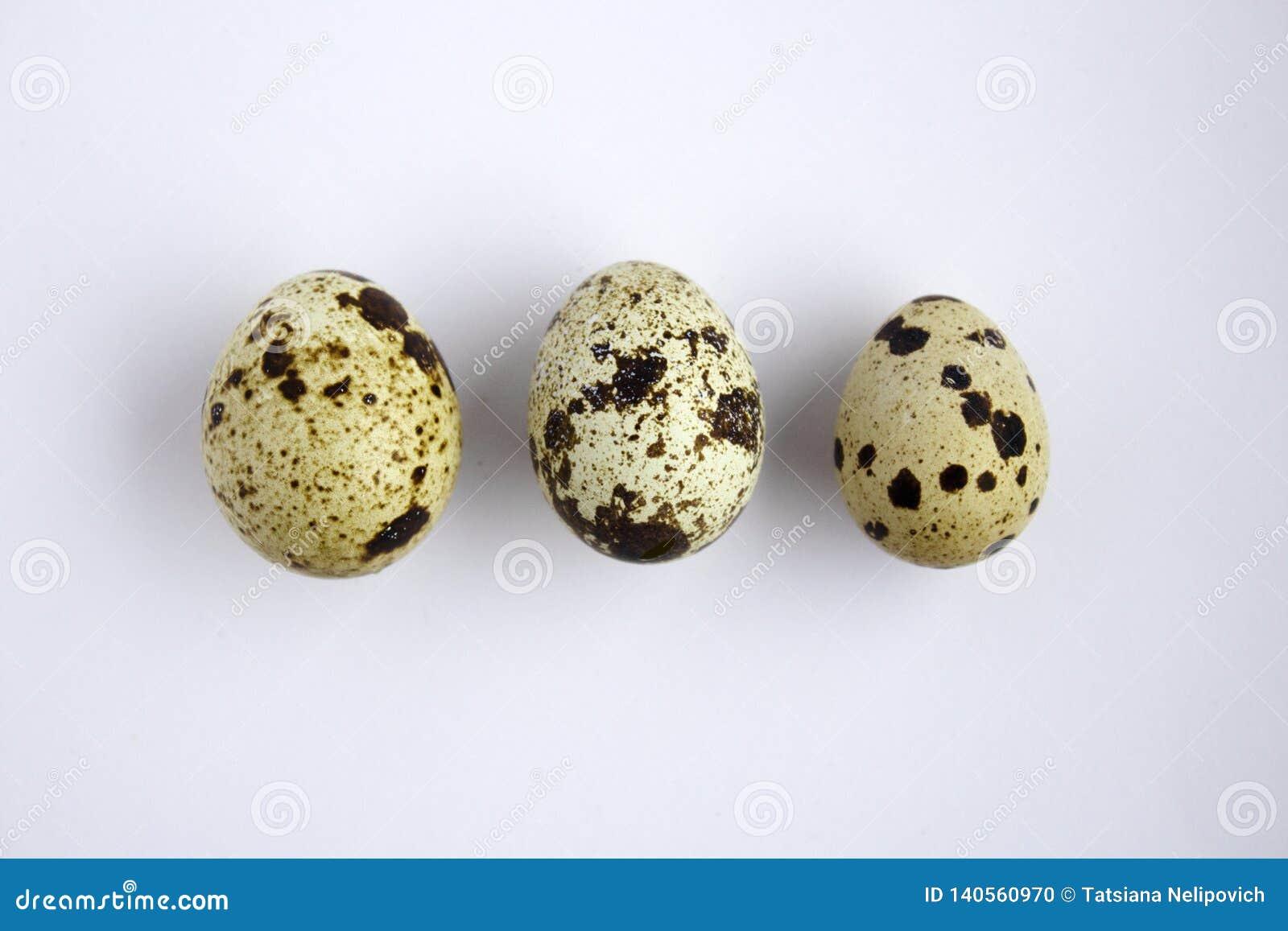 Huevos de codornices en un fondo blanco