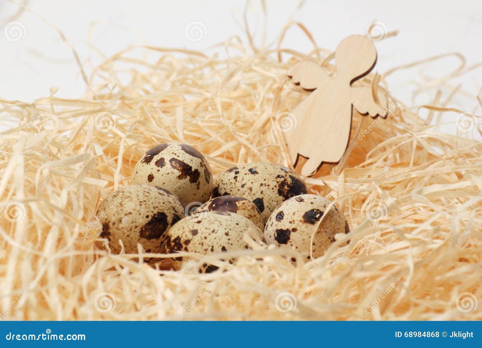 Huevos de codornices en una jerarquía del heno