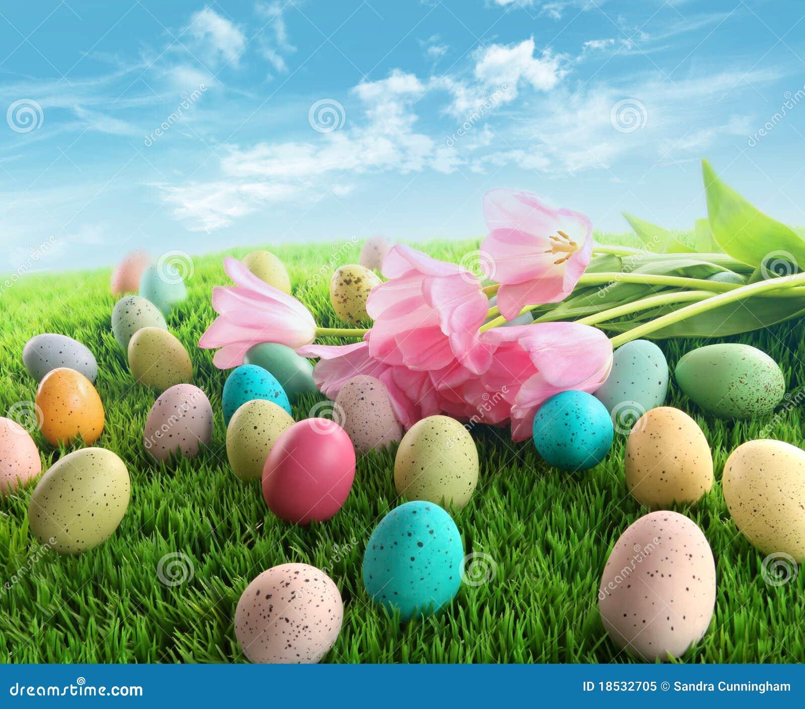 Huevos de Pascua con los tulipanes rosados en hierba