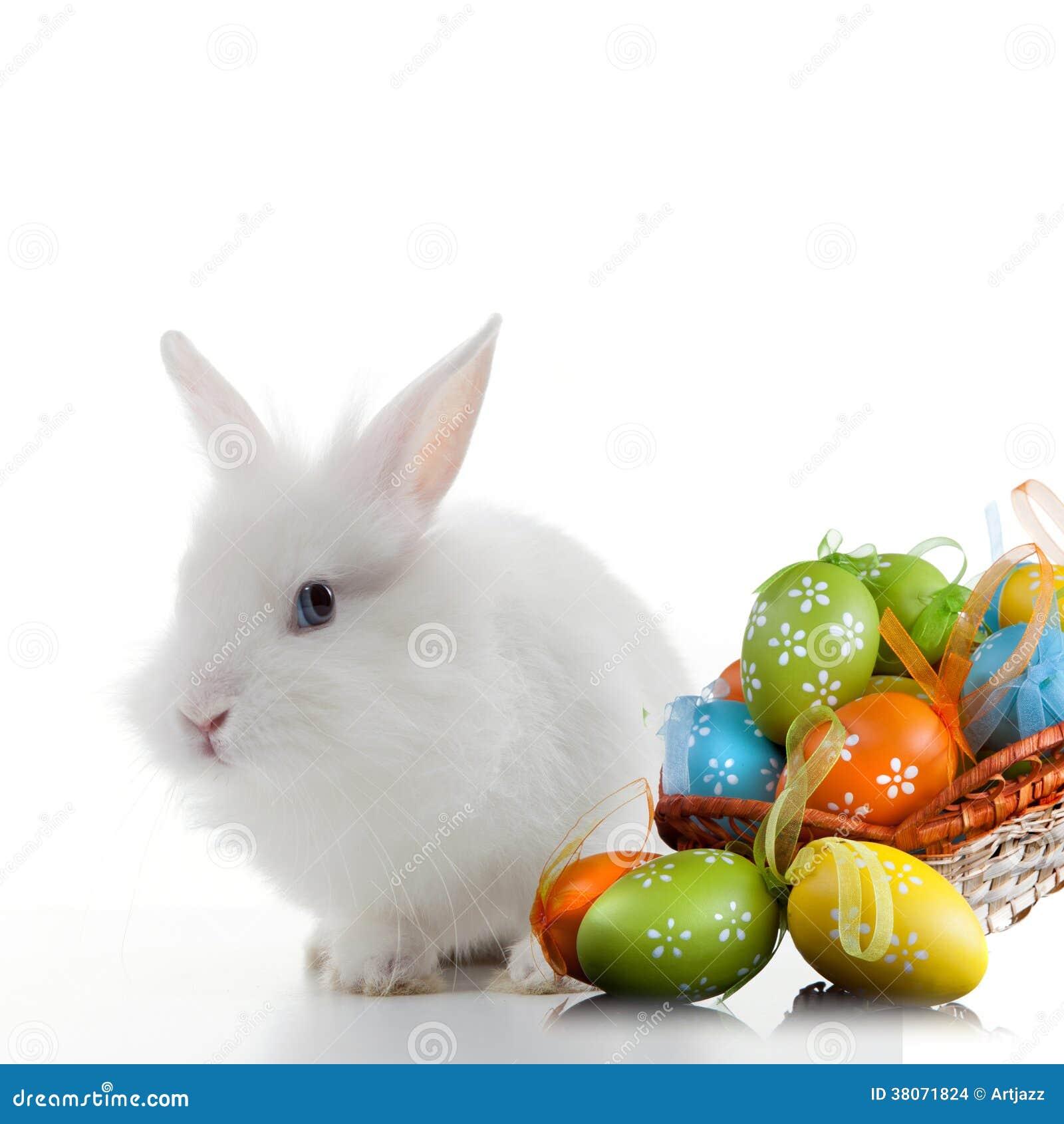 Huevos de Pascua del conejo y del color en la cesta aislada en blanco