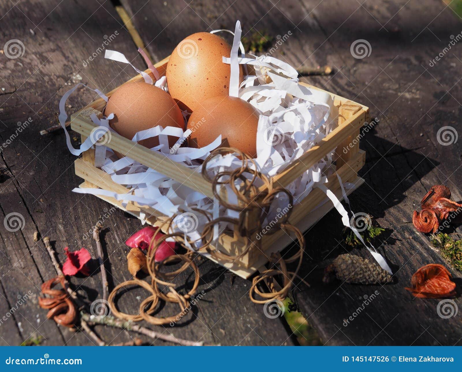 Huevos de Pascua en la cesta en el banco