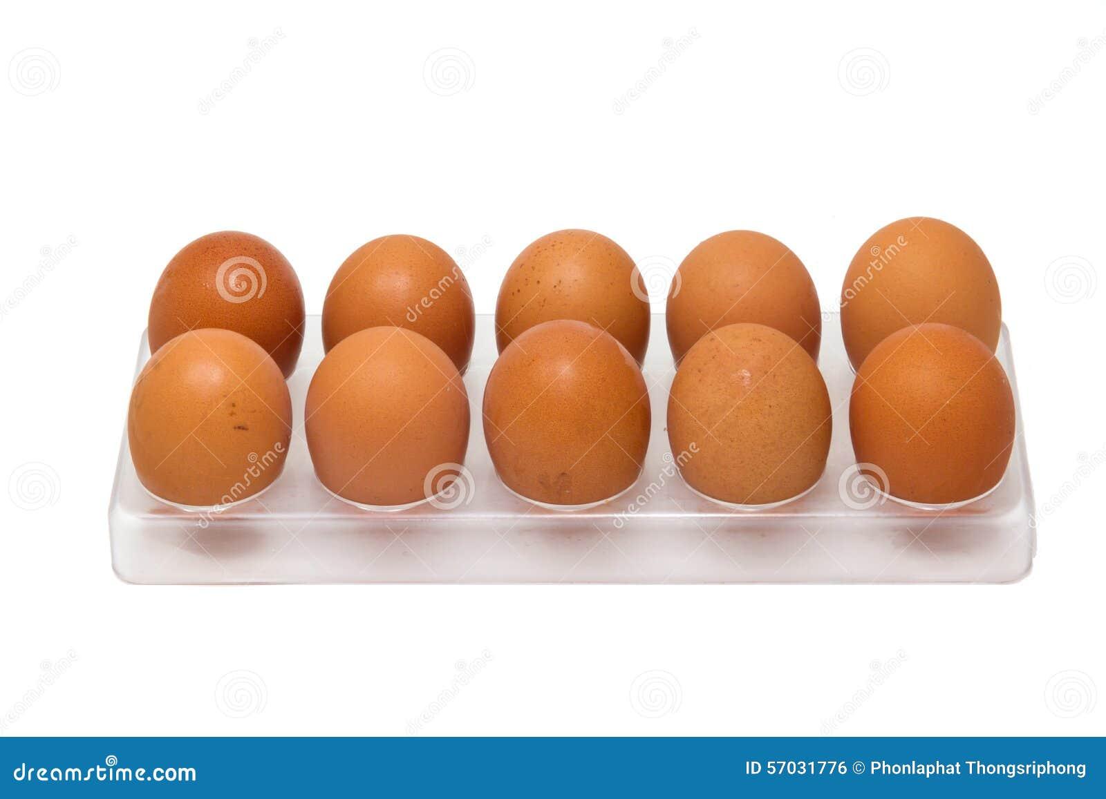 10 huevos del pollo en bandeja del huevo foto de archivo for Bandejas para huevos