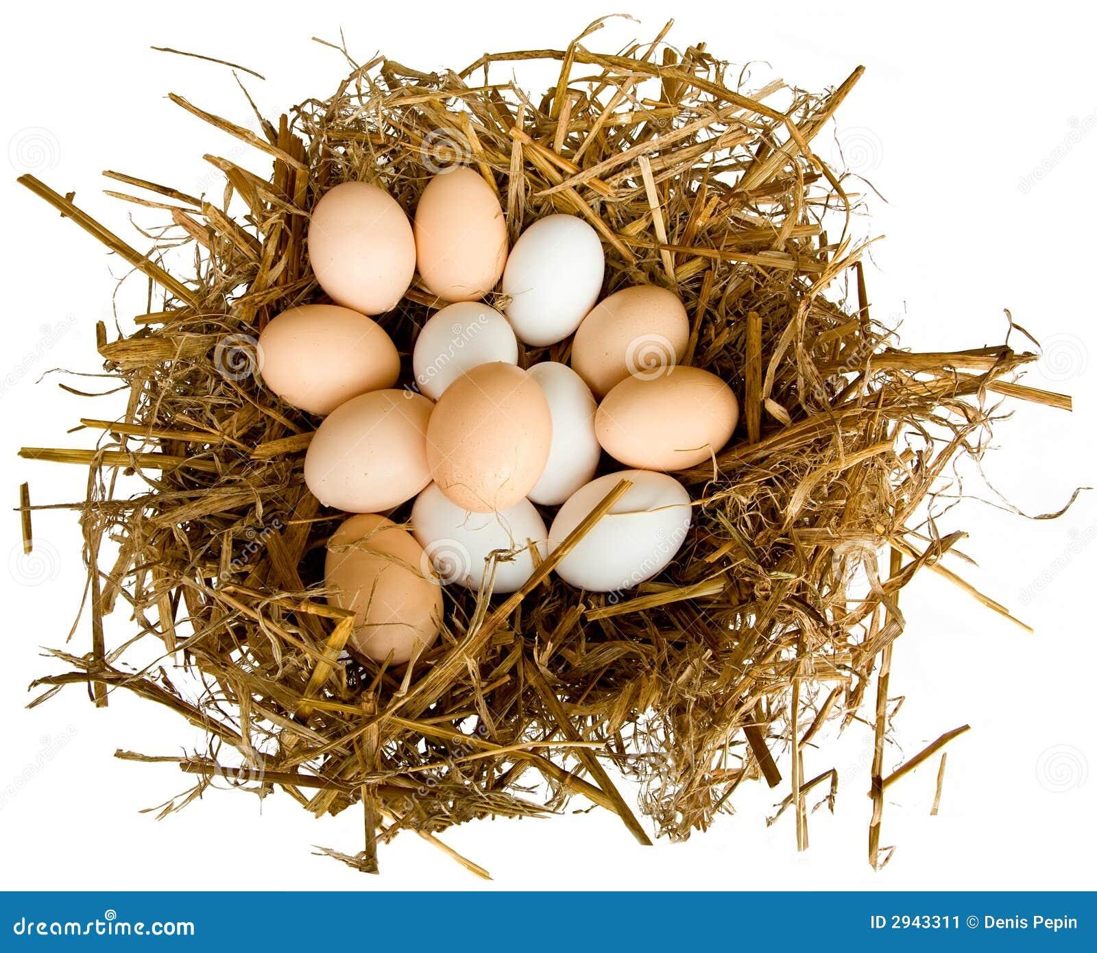 Huevos en una jerarquía