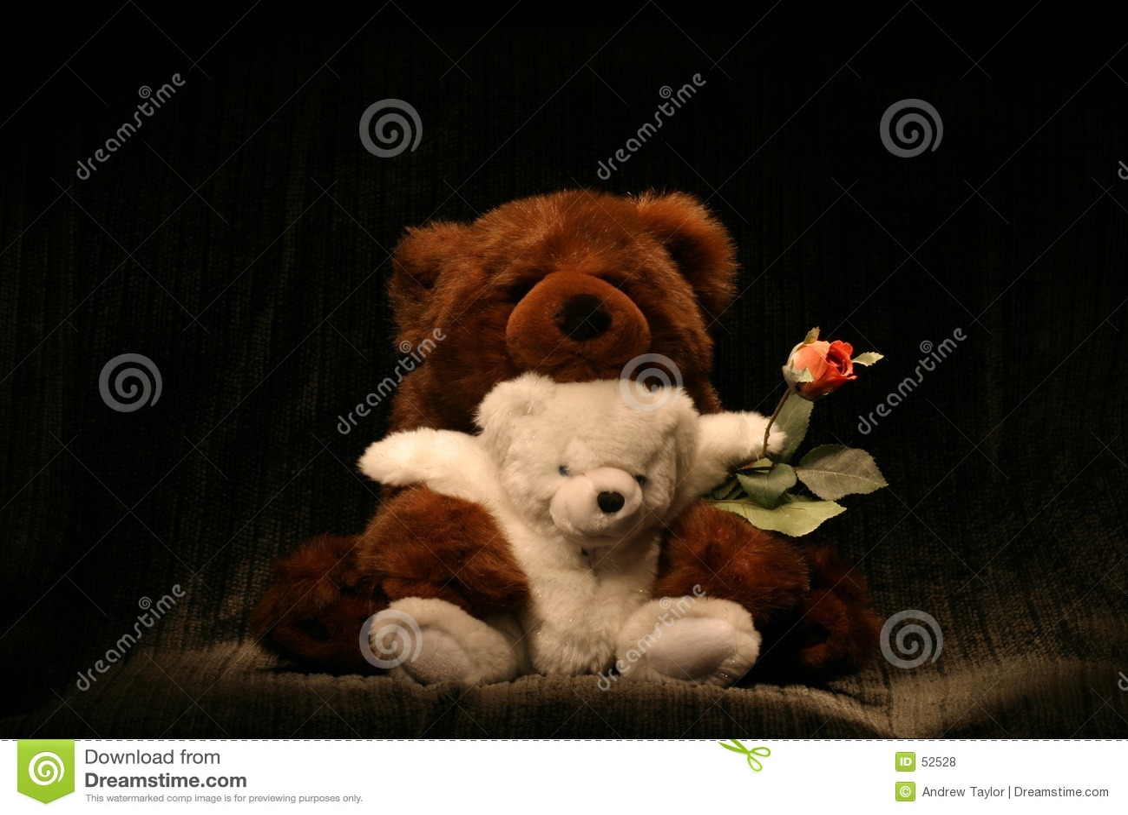 Hug de urso Rosa