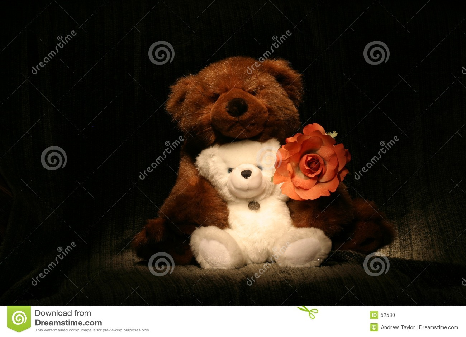 Hug de urso Rose2