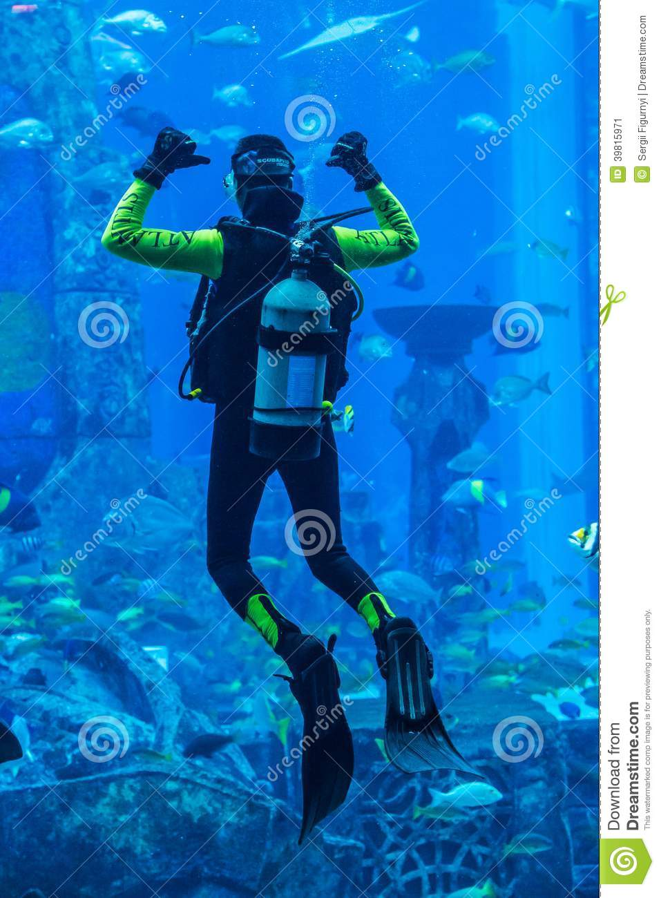 Fish aquarium in uae - Huge Aquarium In Dubai Diver Feeding Fishes Editorial Photo