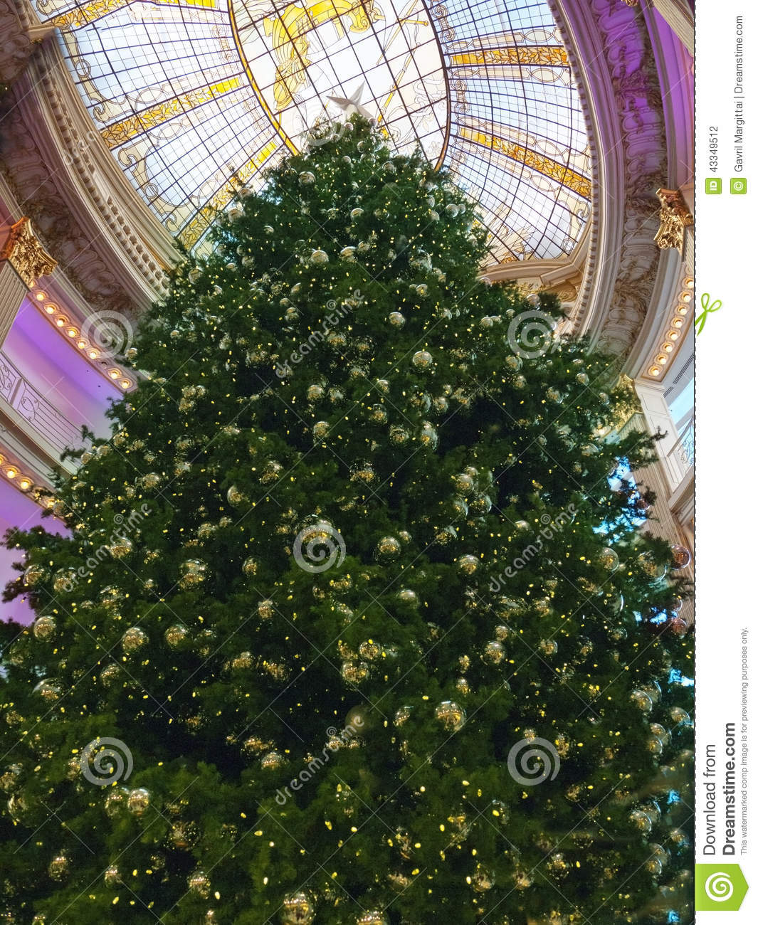 Huge Christmas Tree In A Mall Natural Light Comes From The Glceiling And Combines With The Lights From Below