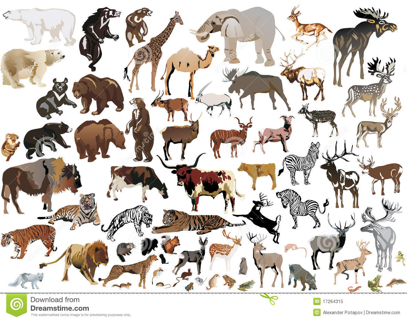 animals collection illustration background isolated vector huge royalty shutterstock bear pets collage