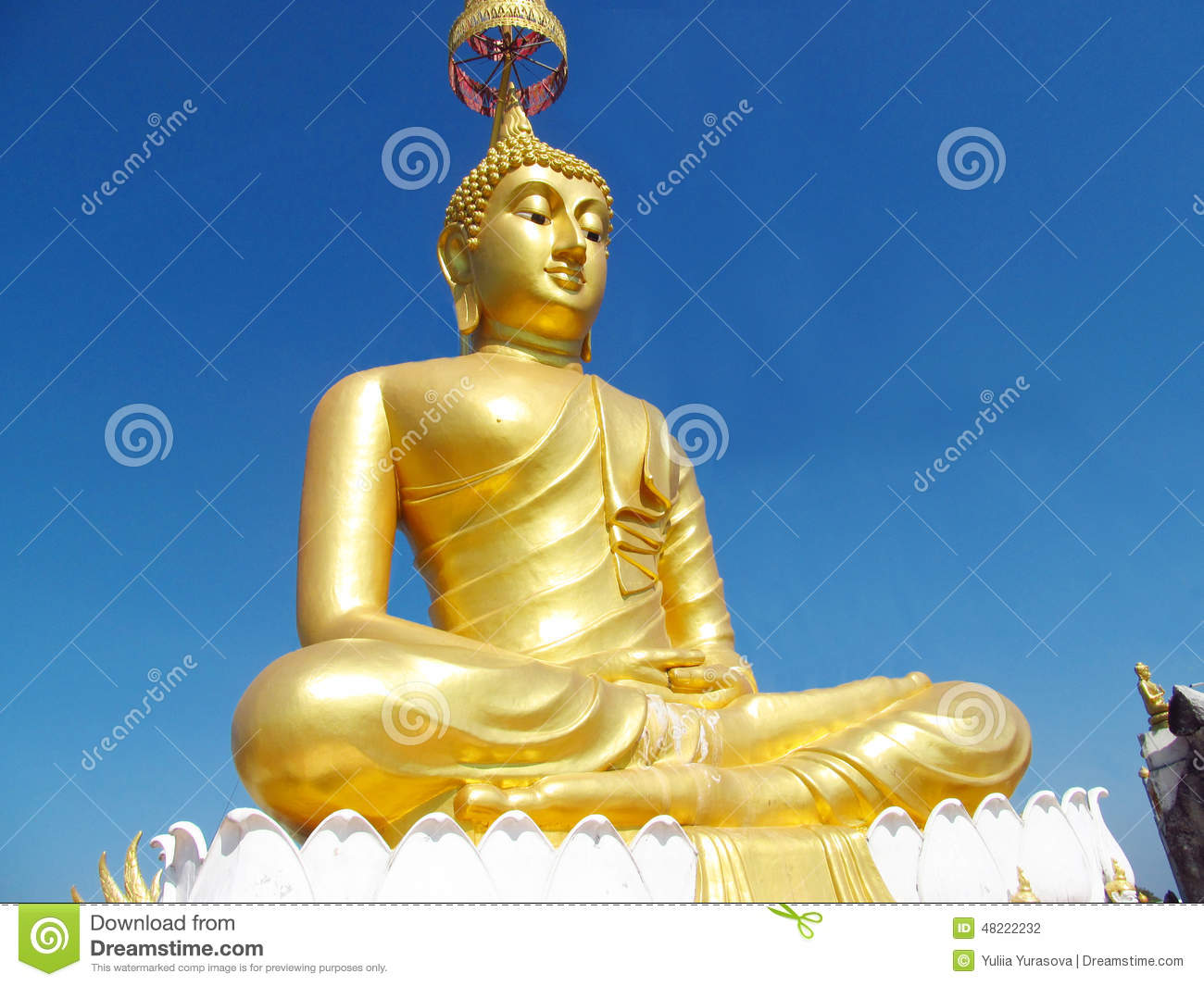 Huge Gold color Buddha statue