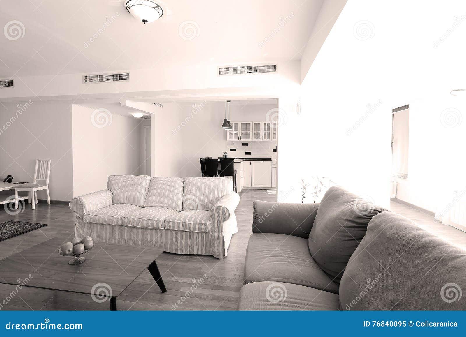 Livingroom Carpet | Huge Living Room With Open Kitchen Stock Image Image Of Livingroom
