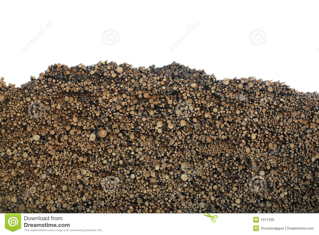 Huge Pile Of Logs Stock Photo Image 1011030