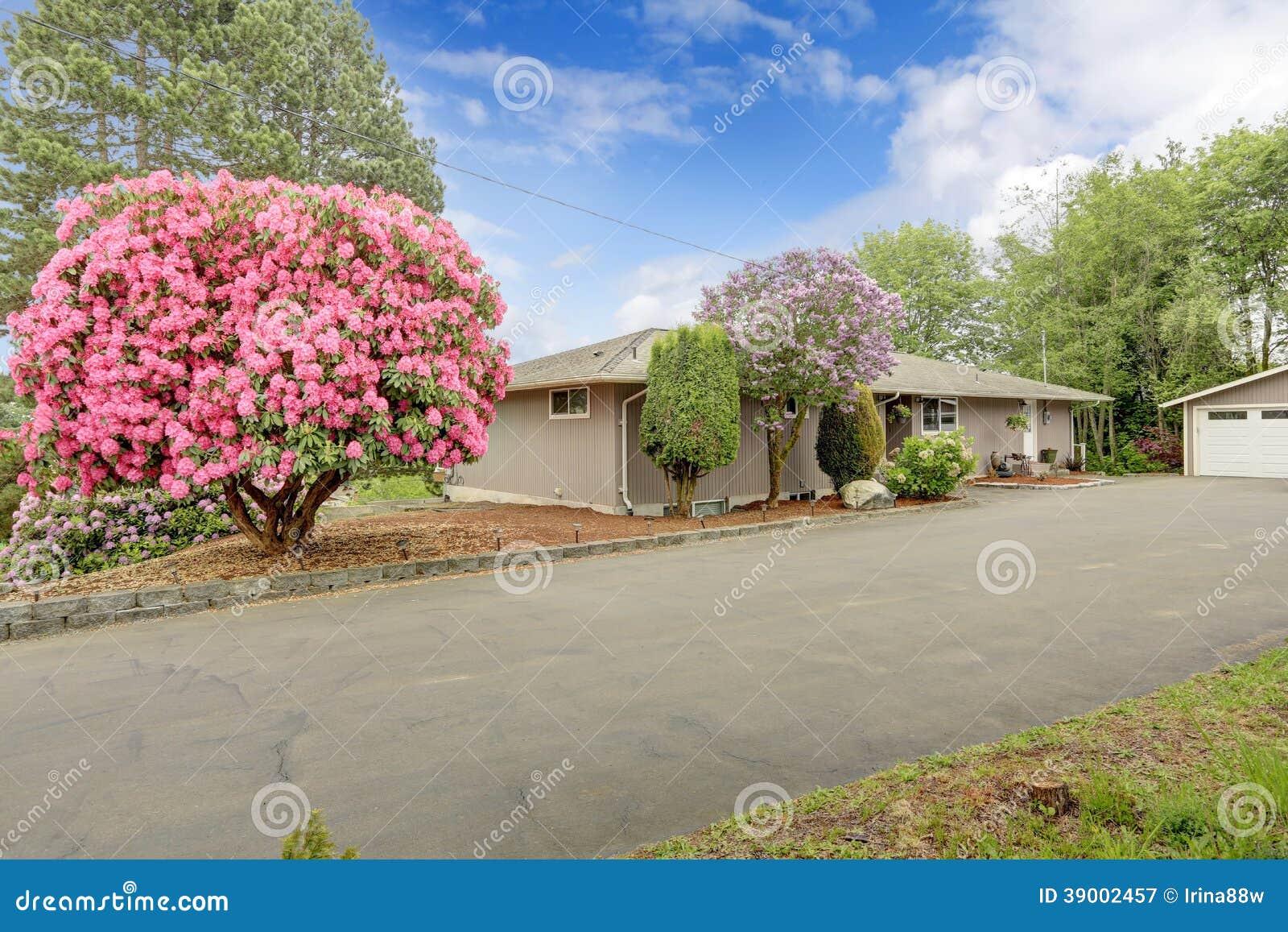 Huis met mooie bloeiende bomen stock foto afbeelding 39002457 - Mooie huis foto ...
