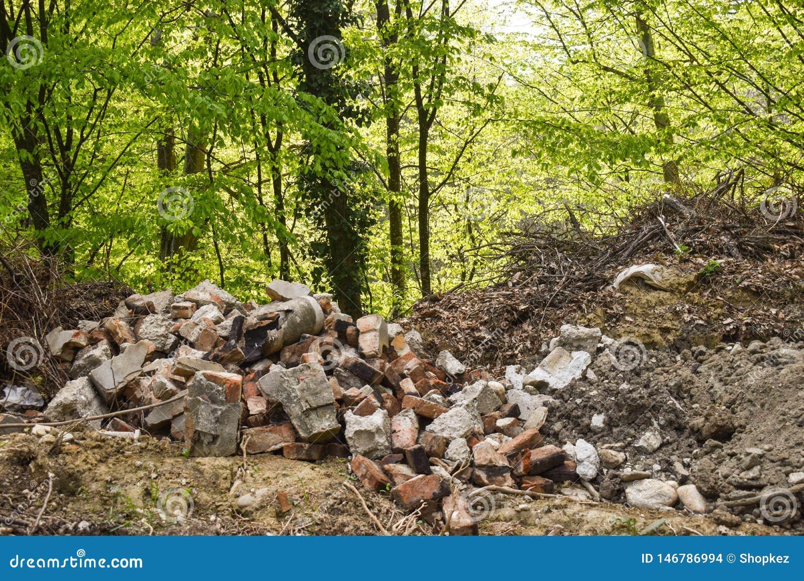 Huisvuil in bosmensen illegaal geworpen huisvuil in bosconcept de mens en aard Onwettige huisvuilstortplaats in aard Vuil e