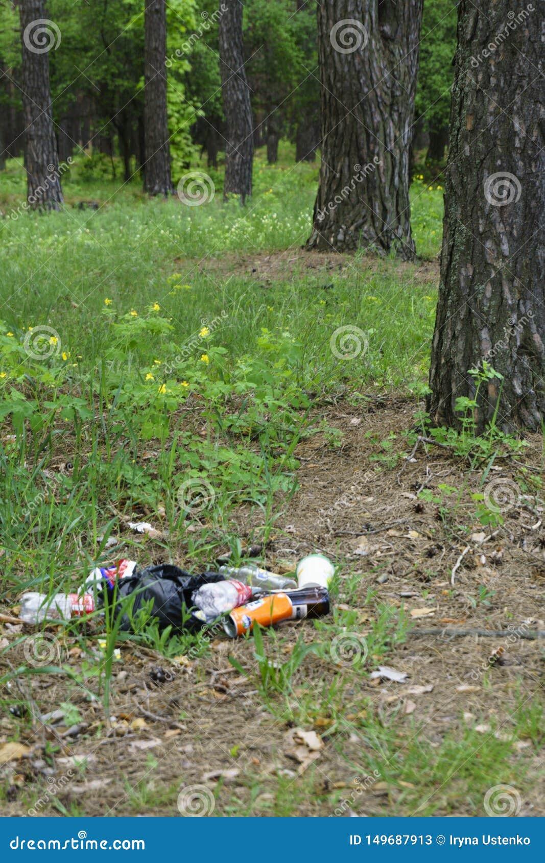 Huisvuil in bosmensen illegaal geworpen huisvuil in bosconcept de mens en aard Onwettige huisvuilstortplaats in aard vuil