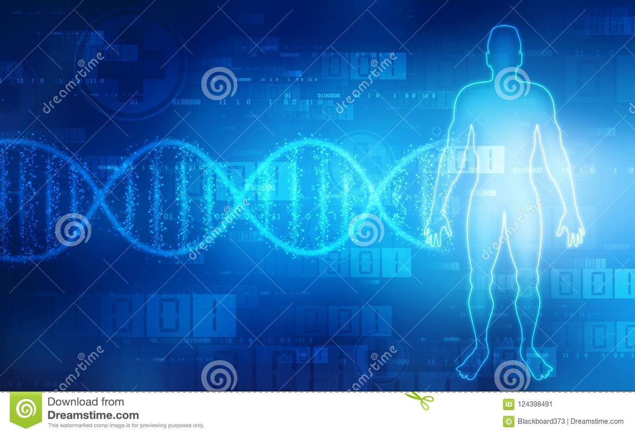 Human Anatomy With Dna Structure In Medical Background Stock ...