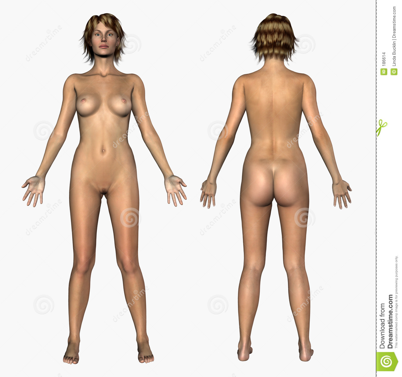 back front and Nude girl