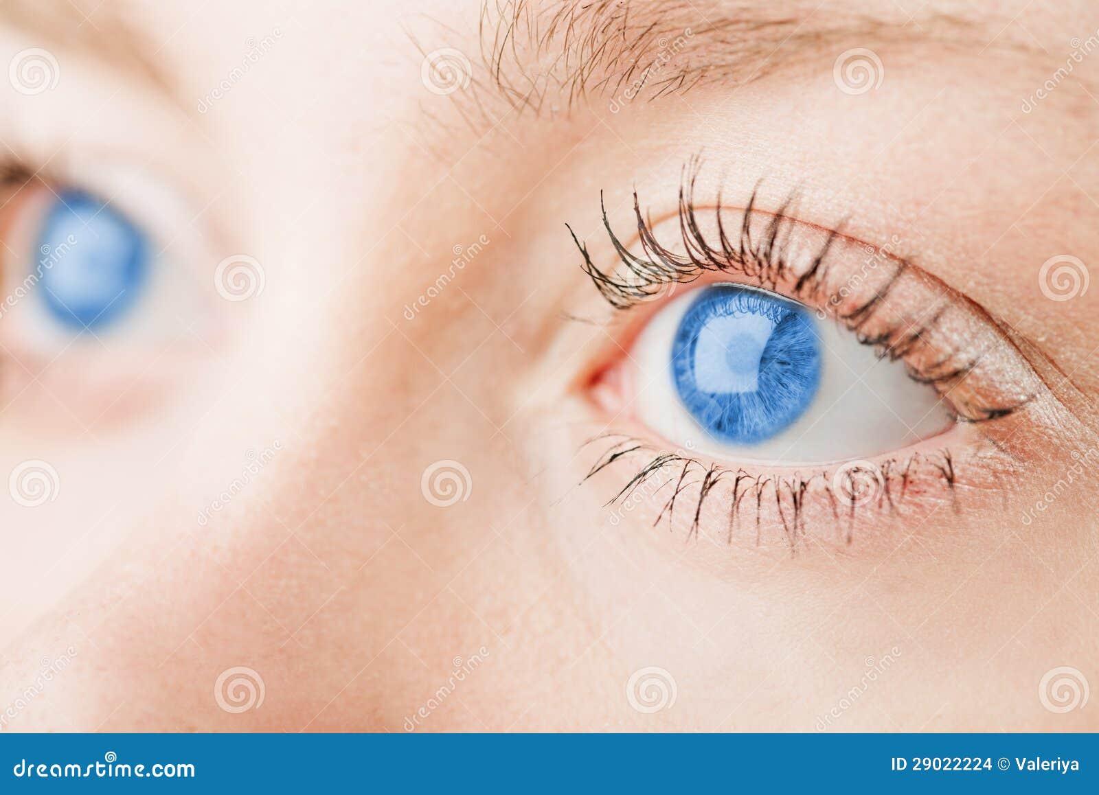 human blue eyes stock images image 29022224