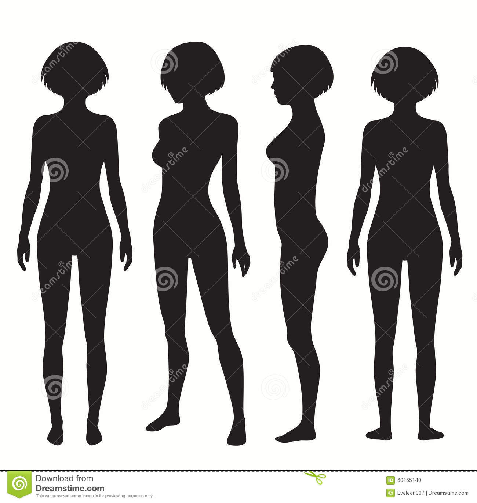 Human Body Anatomy Stock Vector - Image: 60165140