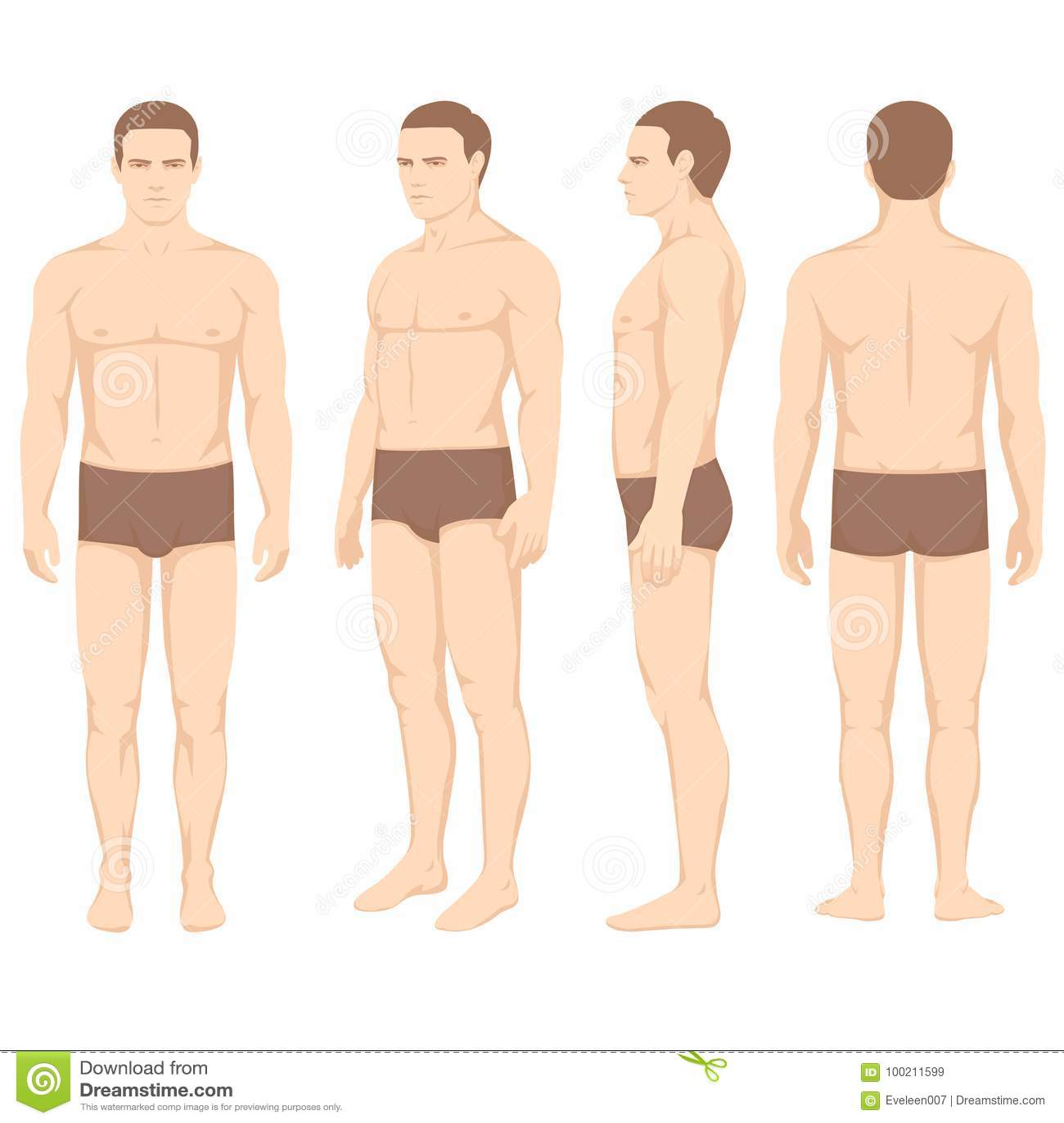Man anatomy body