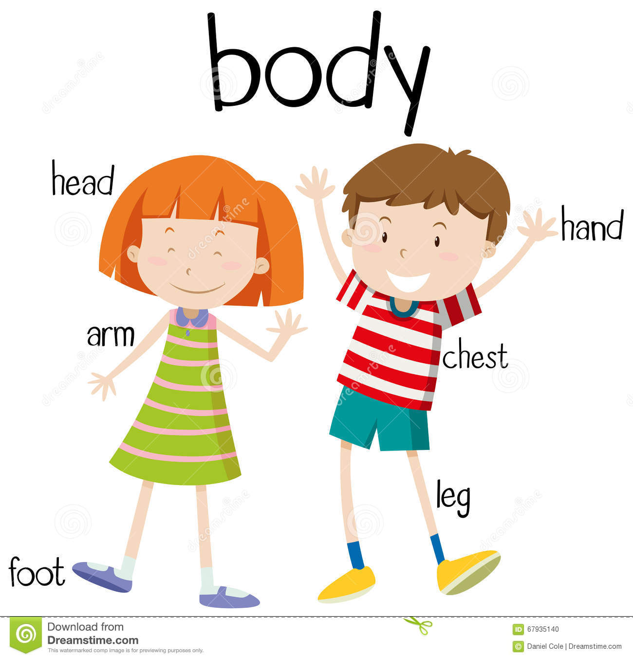 Body Parts Boy Girl Stock Illustrations – 61 Body Parts Boy Girl ...