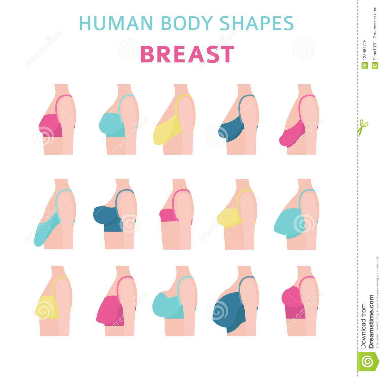 With and breasts types shapes pictures
