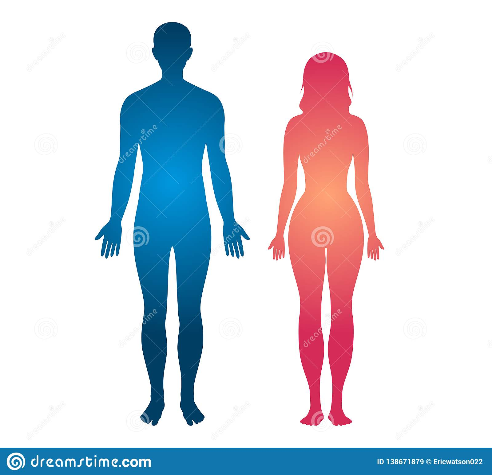 human body stock illustrations 290 514 human body stock illustrations vectors clipart dreamstime https www dreamstime com human body silhouette man women body vector illustration human body silhouette man women body vector illustration white image138671879
