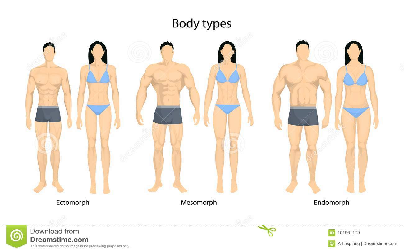 body types men - Isken kaptanband co