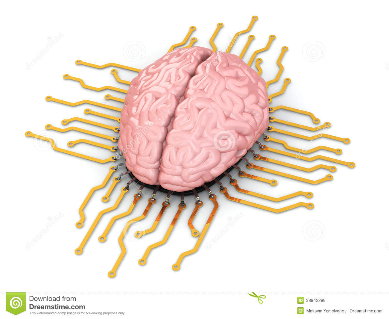 Human Brain As Computer Chip  Concept Of CPU  Stock Illustration