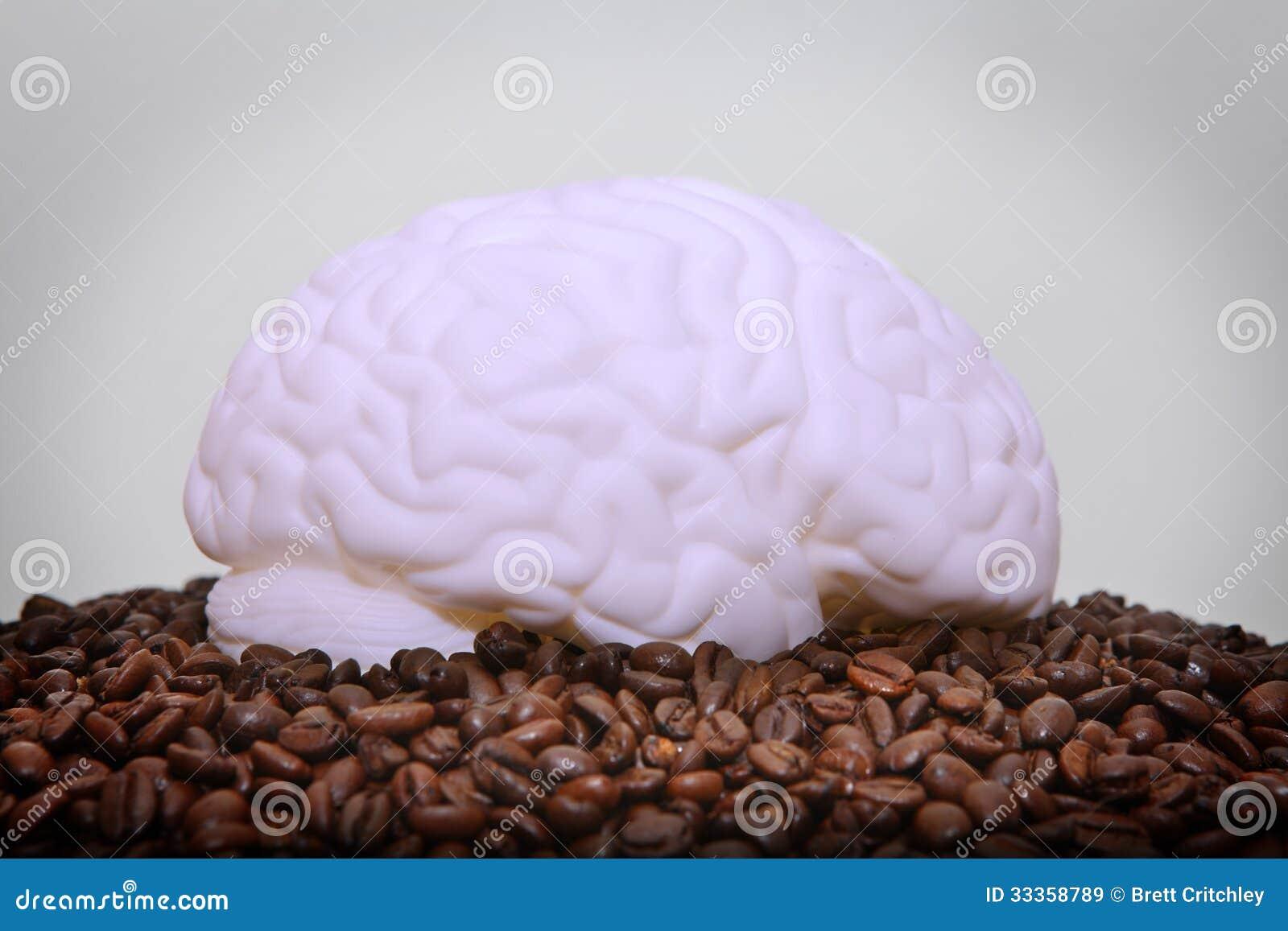 Human brain caffeine addiction