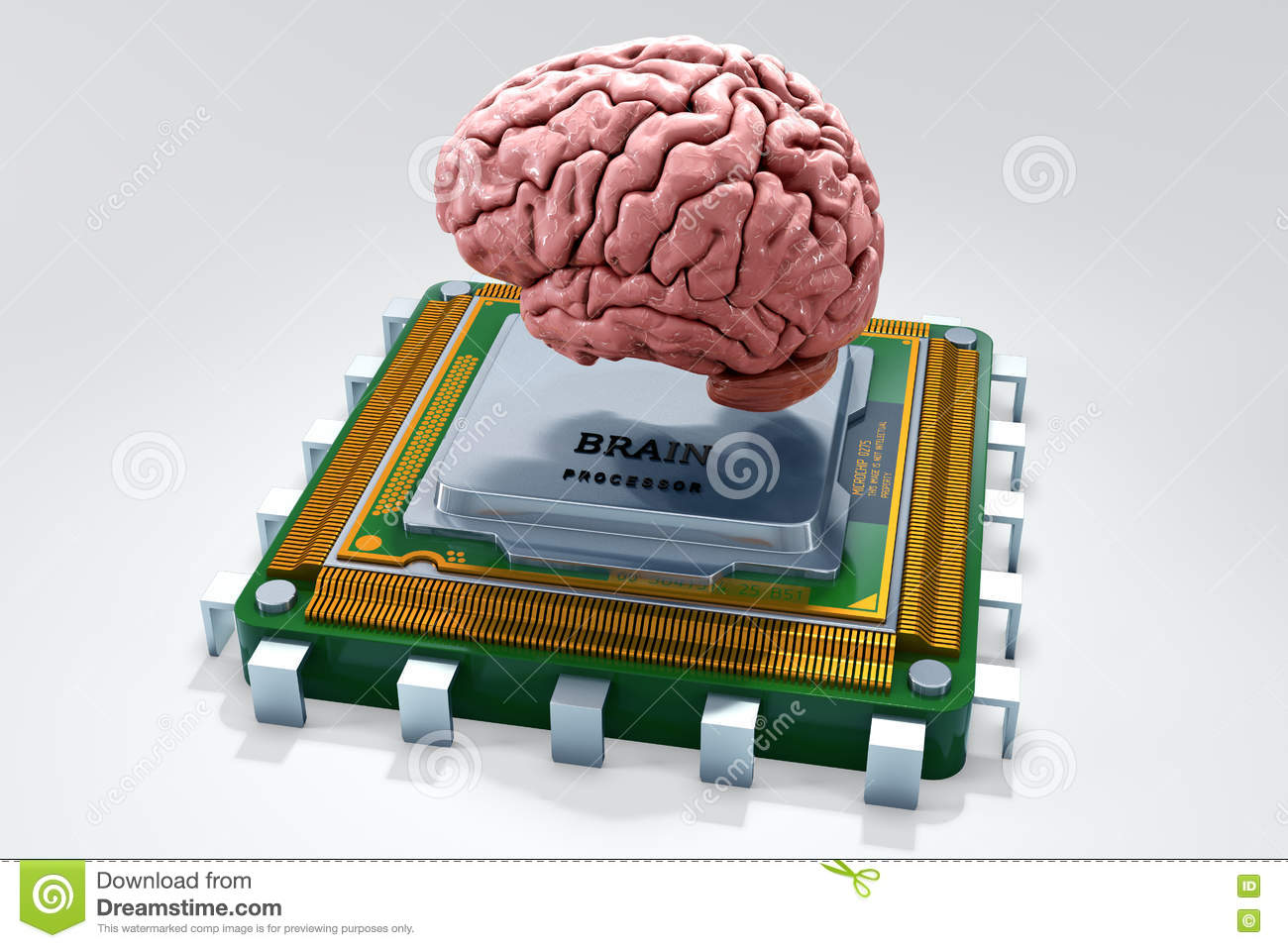 the computer a competitor with the human brain 3 computers that mimic the human brain jess and neural networks that could mimic the human brain's working memory a computer with such brain-like ability.