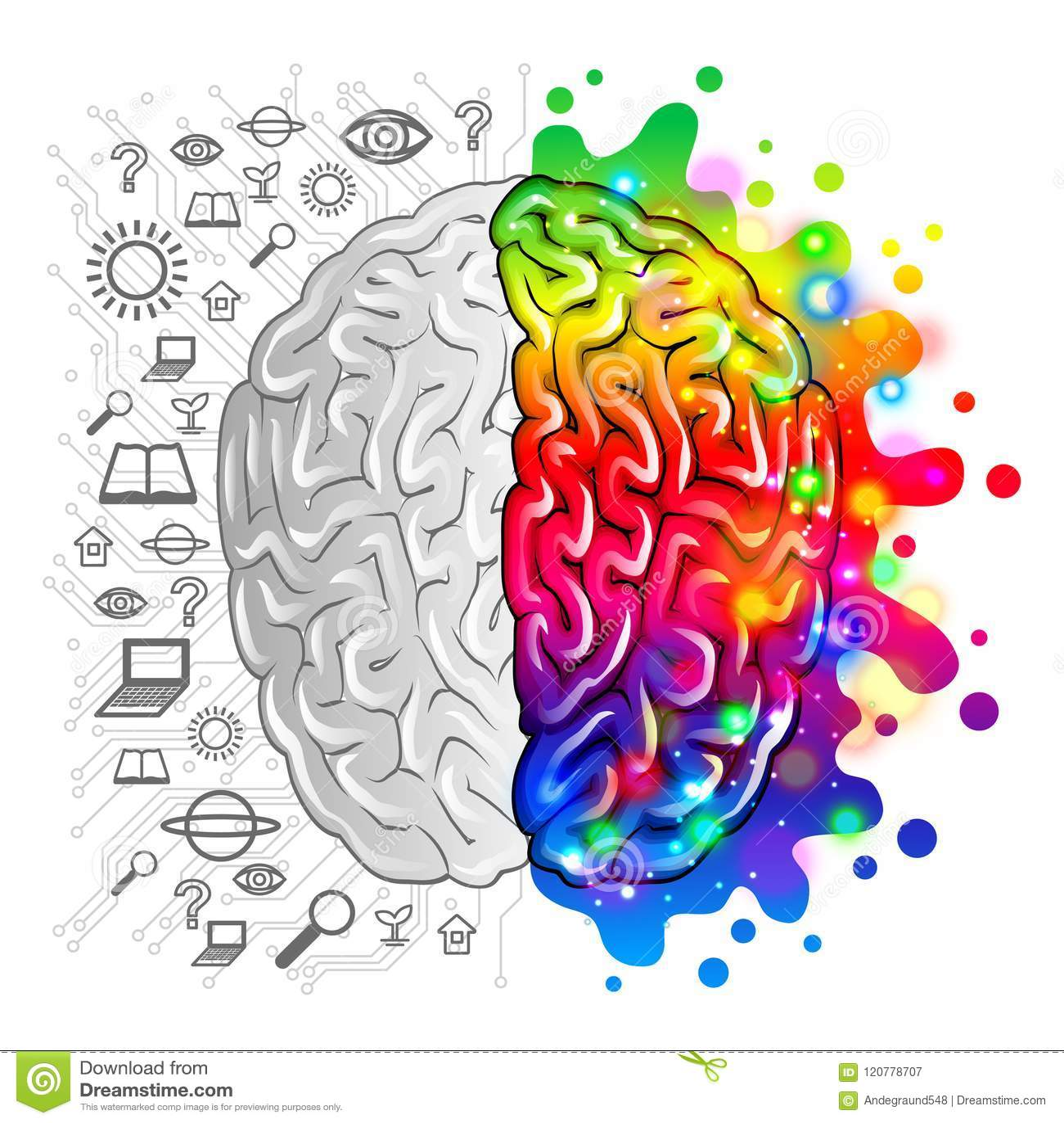 Human brain concept logic and creative vector