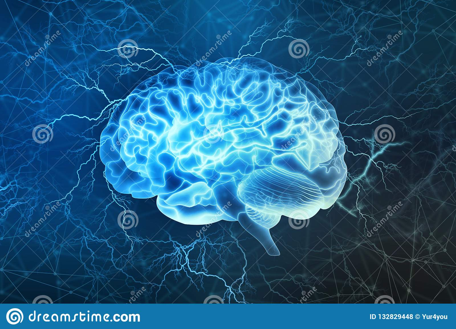 Electrical activity of the human brain