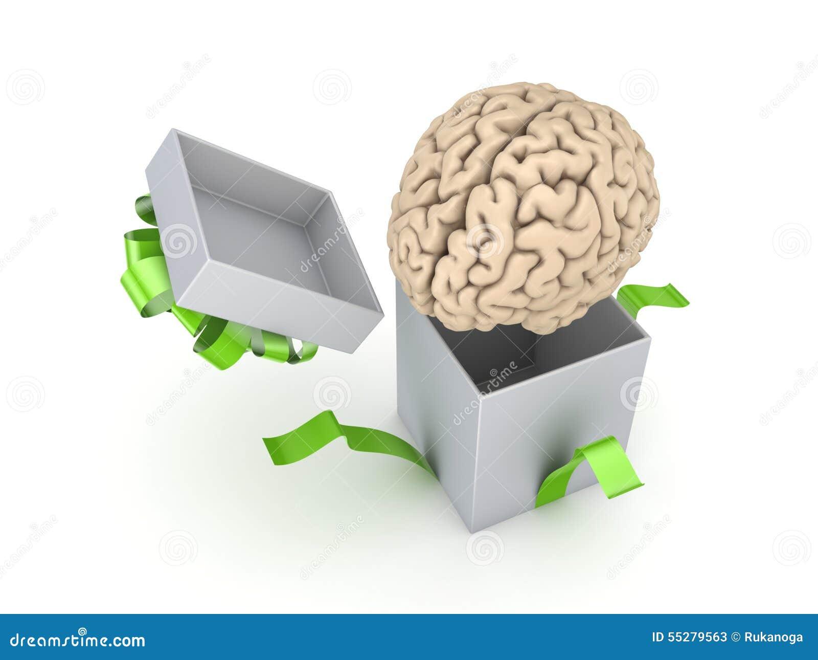 Human Brain At A Gift Box Stock Illustration - Image: 55279563