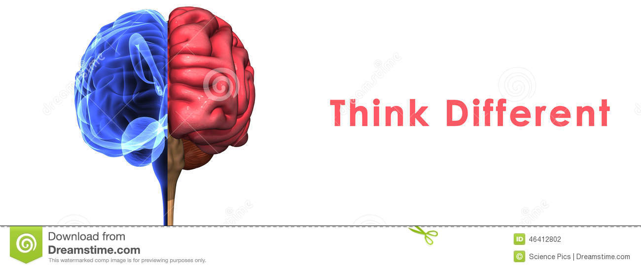 Human brain stock illustration illustration of medical 46412802 the human brain has many properties that are common to all vertebrate brains including a basic division into three parts called the forebrain midbrain ccuart Images