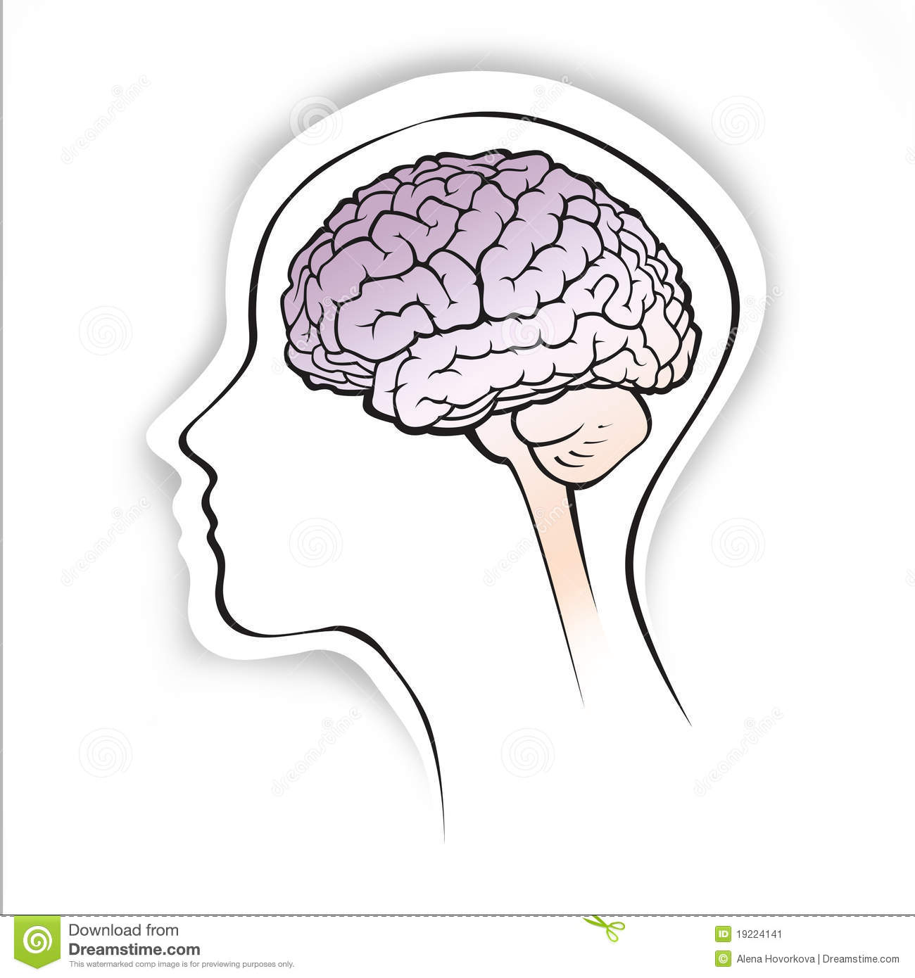 Human brain within a simple head silhouette stock illustration human brain within a simple head silhouette ccuart Images