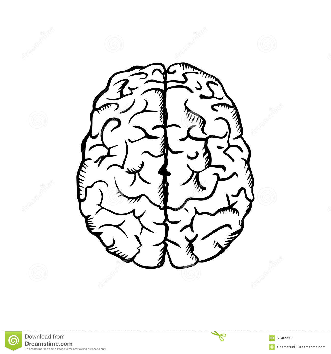 human brain sketch in ouline style stock vector