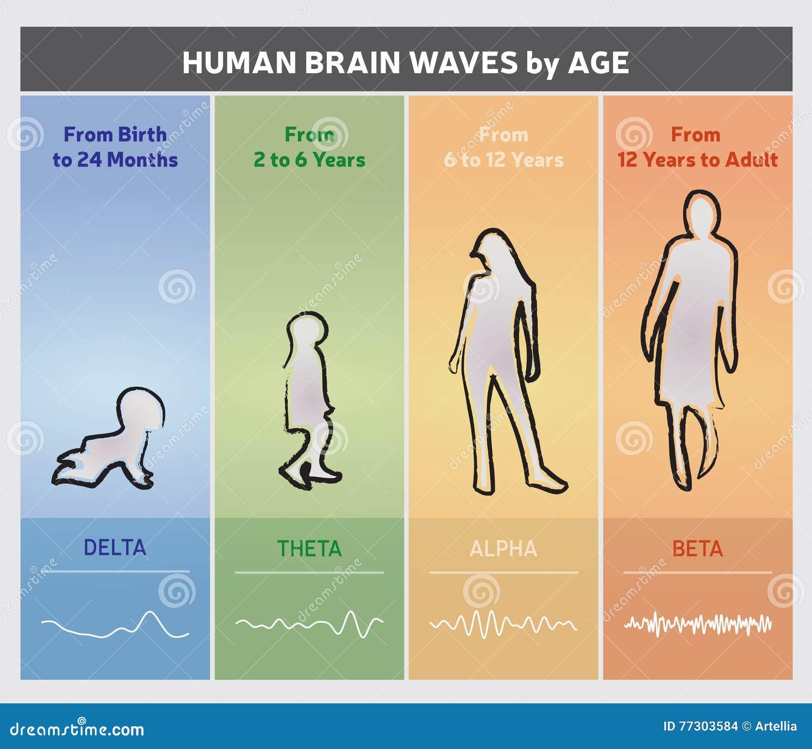 Brain Delta Waves Stock Illustrations – 16 Brain Delta Waves Stock