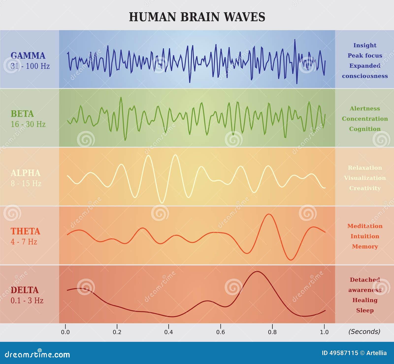 Brain Waves Time Travel