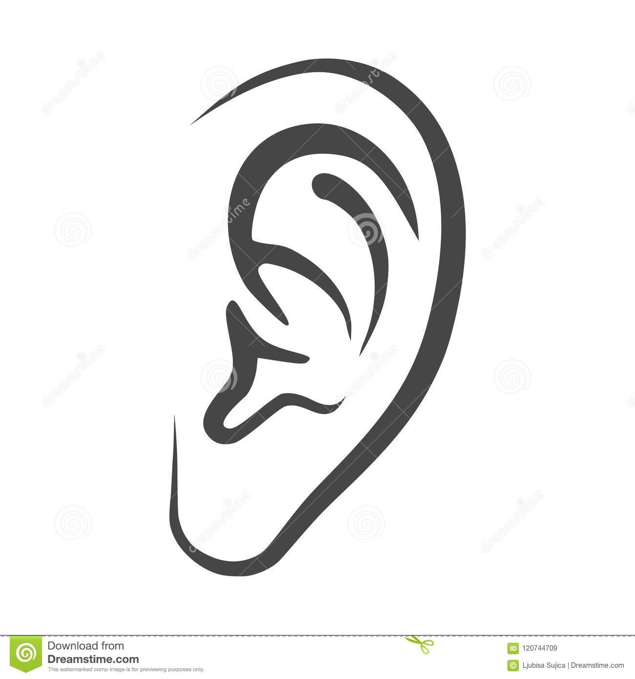 It is a picture of Persnickety Ear Drawing Simple