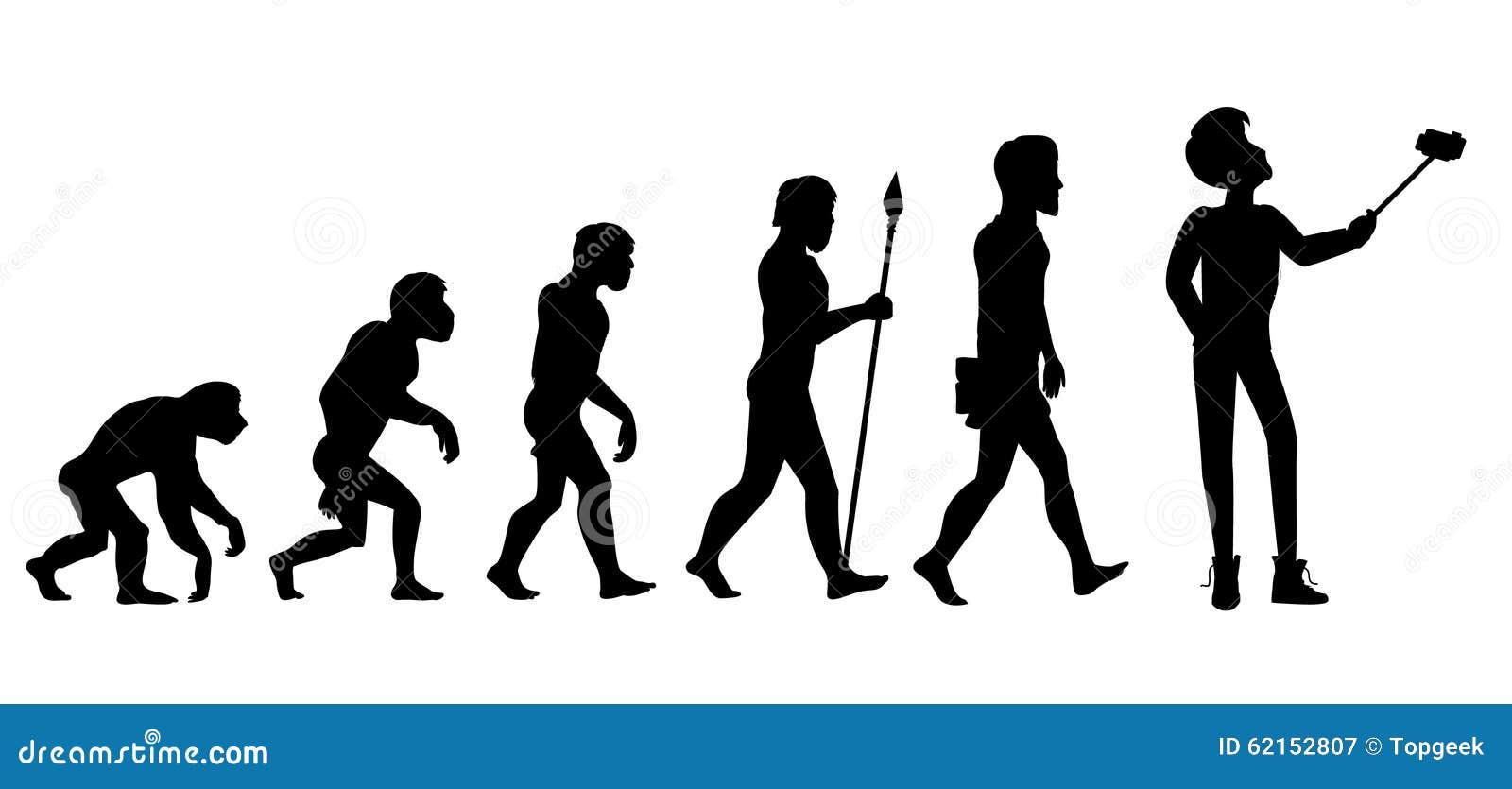 essay on primate evolution anthropology