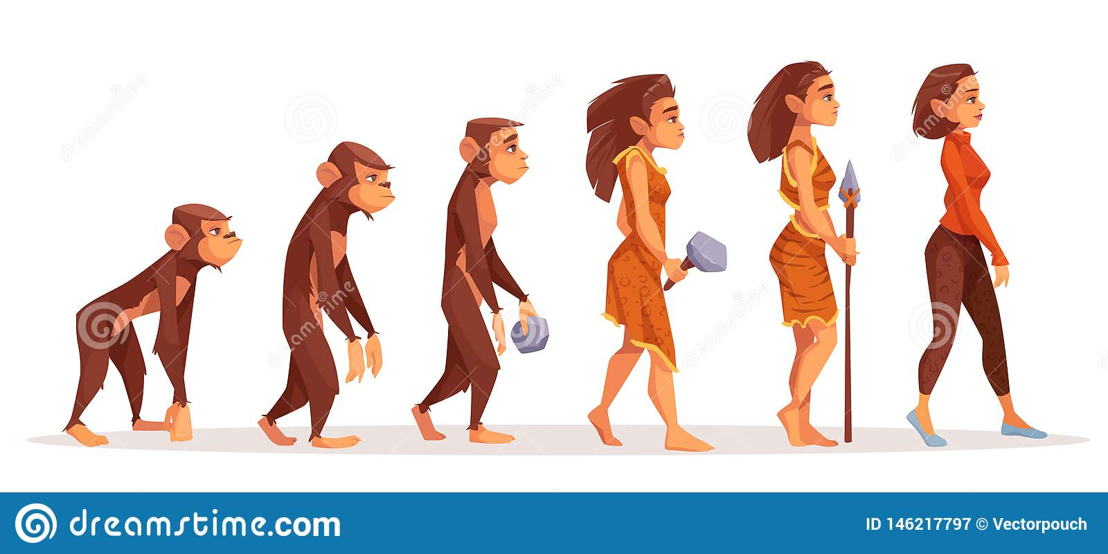 Human evolution from monkey to modern woman