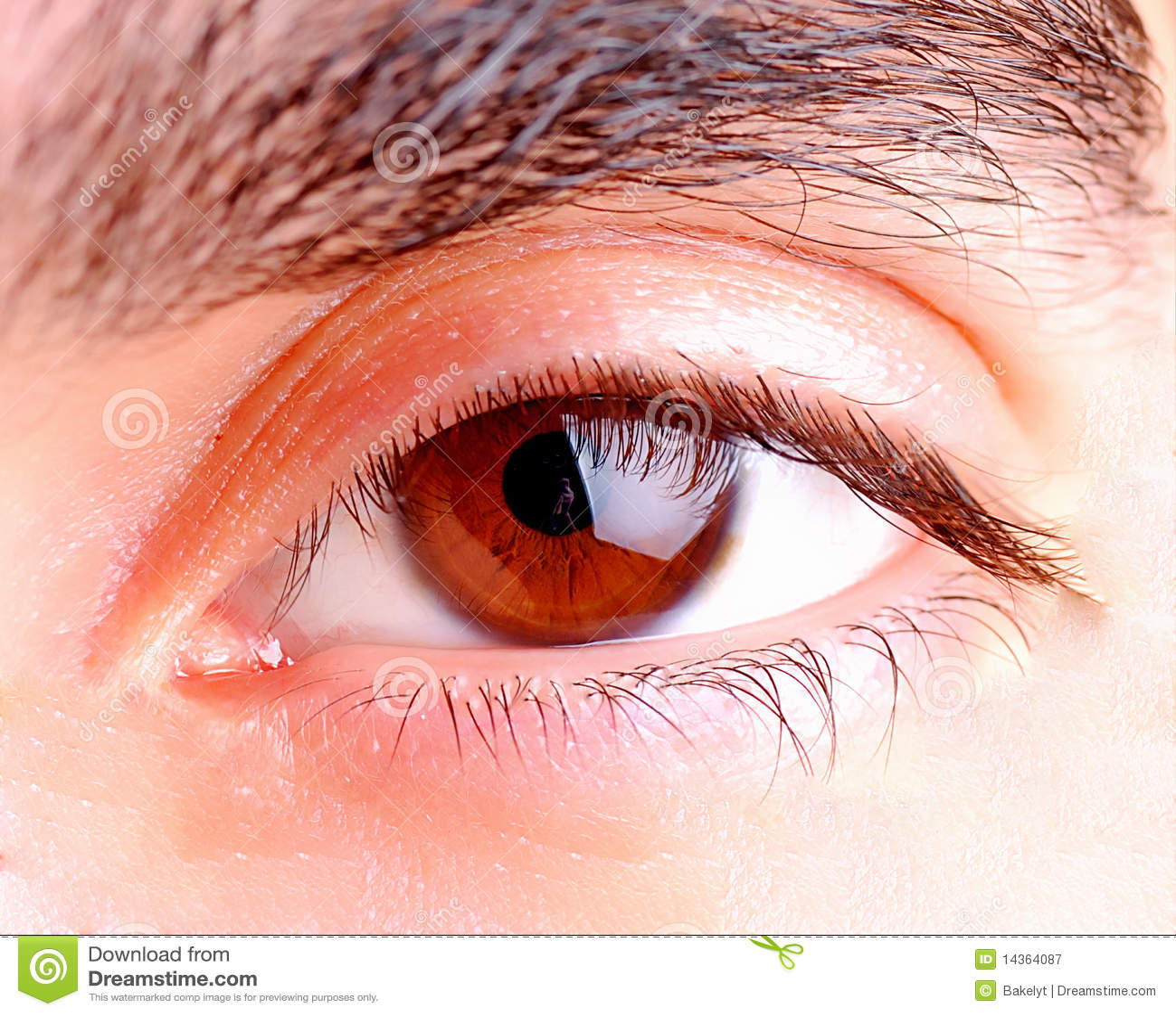 Human Eye Royalty Free Stock Photography Image 14364087