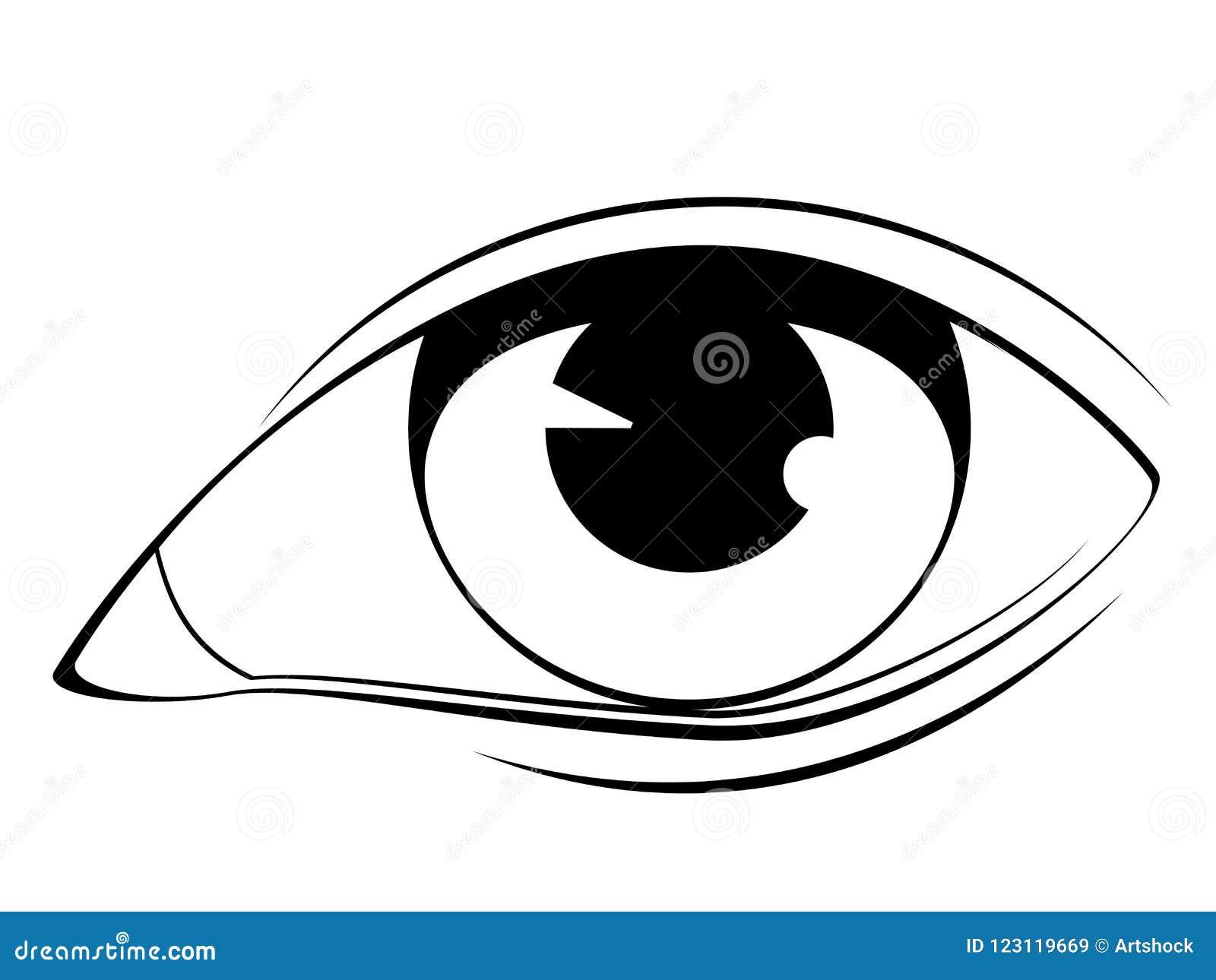 Human Eye In Black And White Stock Vector Illustration of eyeball